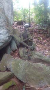 Igbo Olodumare Sacred Forest